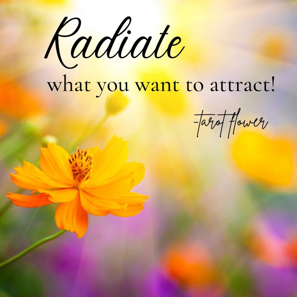 radiate what you want to attract daily tarot inspirational quote